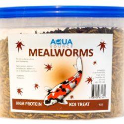 mealworms 400g aquasource